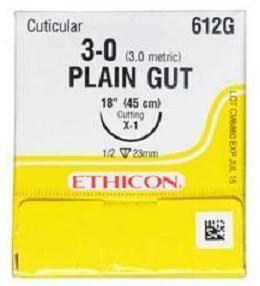 Ethilon Plain Gut Sutures - Ethicon