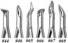 English Pattern Root Forceps