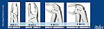 Miltex Mead Pattern Forceps (Integra Miltex)