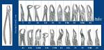 Miltex Xcision Forceps (Integra Miltex)